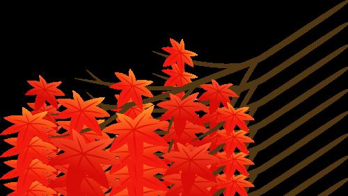 紅葉と羽織